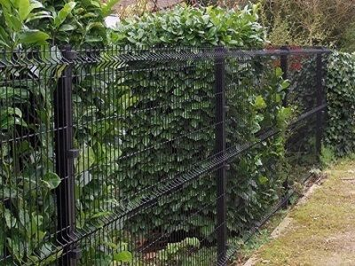 Single wire fencing